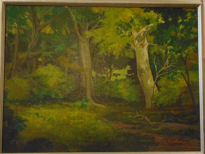 """:Sycamore Clearing"""" - Bill Harris Art"""