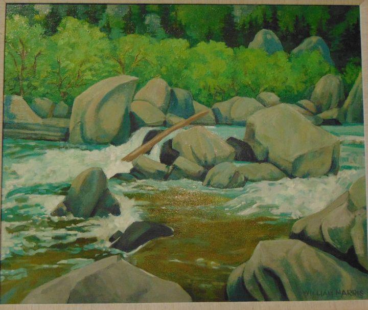 Floating log - Bill Harris Art