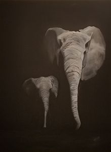 Elephants in the dark