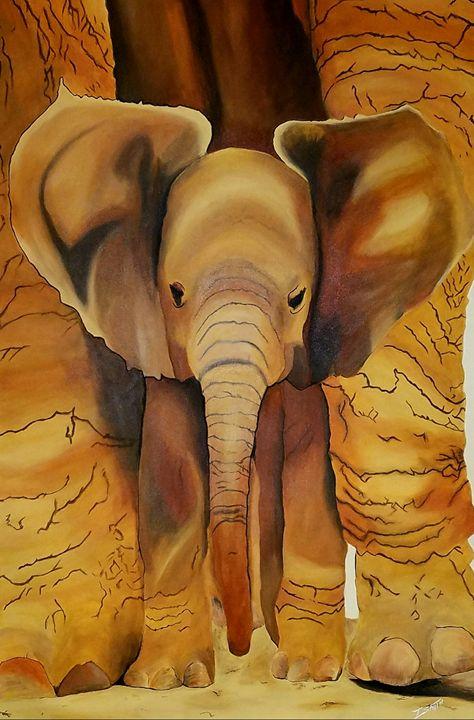 baby elephant - Todd Smith