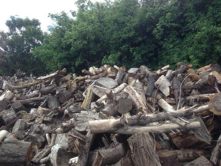 stockpiling - Andrew Bowes