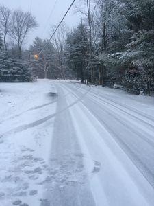 Elks pine road