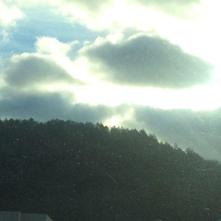 Clouds over pine - E.U.C