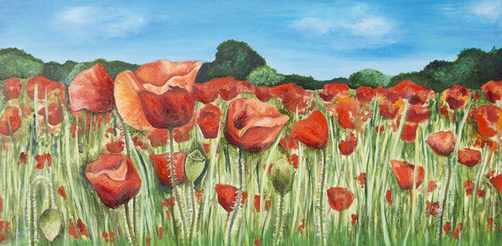 Beautiful Poppy Field - Kathryn Clifford