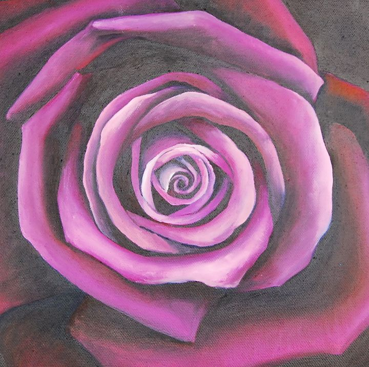 Purple and pink beautiful Rose - Kathryn Clifford