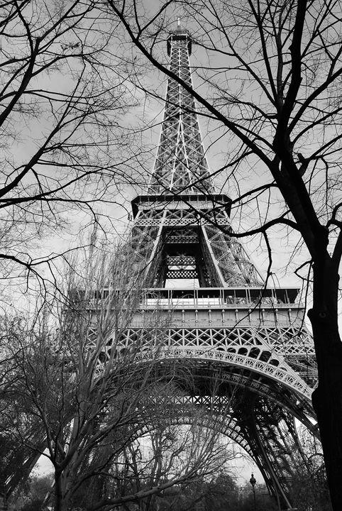 Eiffel Tower, Paris, France - Kathryn Clifford