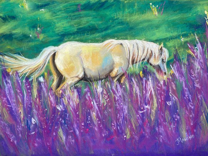 Palomino in a field - Jill Marino