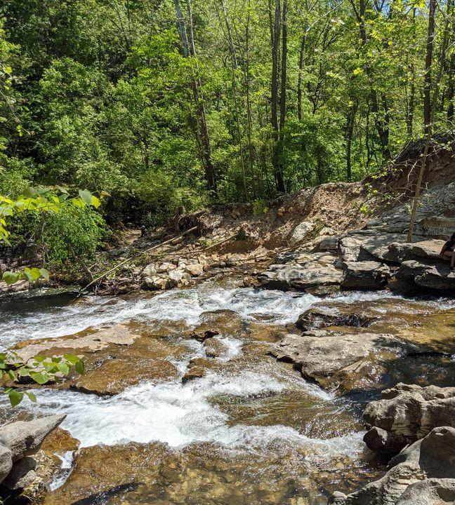 Tanyard creek Arkansas - Blakely Art
