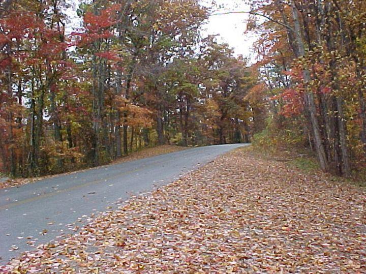Autumn on the Blue Ridge Parkway - G J Schulte