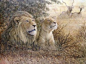 Lion pair with Kudus