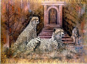 Lost City Cheetahs