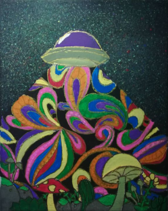 Psychedelic UFO - Gravity Raccoon Paints
