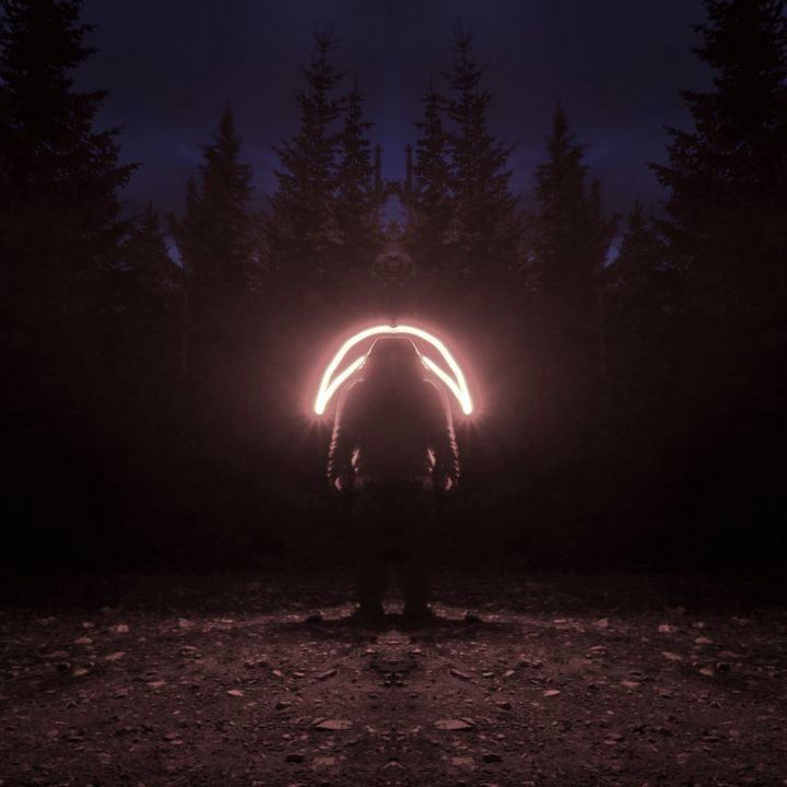 The Visitor's Halo - PhotoJunkieNB