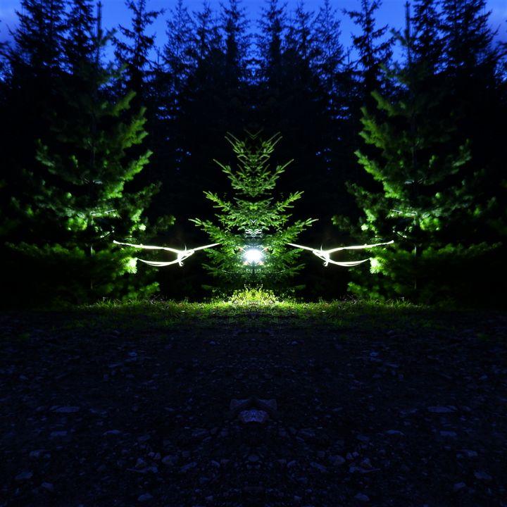 Follow the Light - PhotoJunkieNB