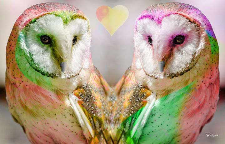 The Love Owls - Digital Printable Art