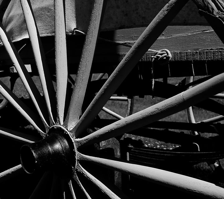 Wagon Wheel - Cantor Photography