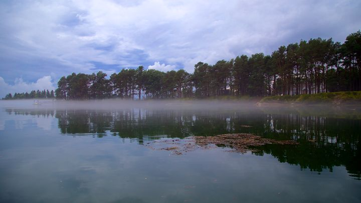 Foggy Morning - Cantor Photography