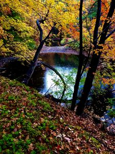 Autumn at the Pond - Cantor Photography