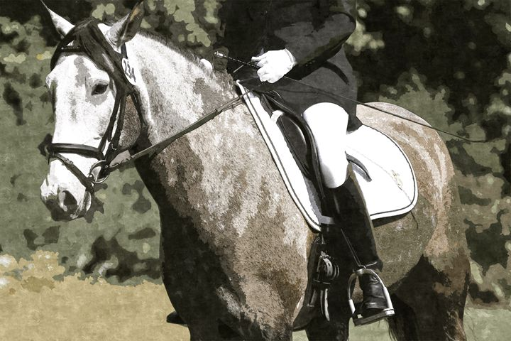 "Photo Painting - ""Adult Dressage"" - Cantor Photography"