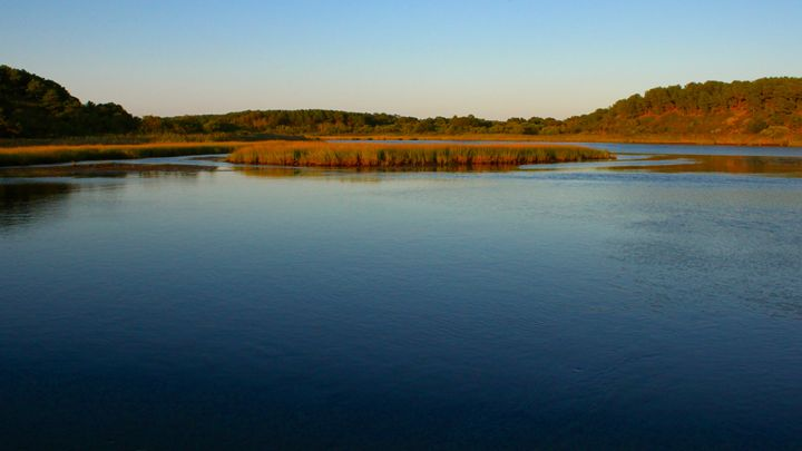 Inlet at Sunset - Cantor Photography