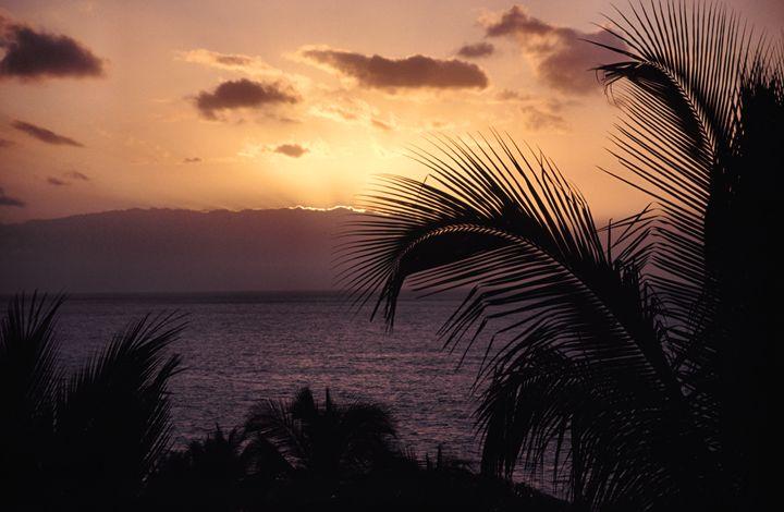 Maui Sunset - Cantor Photography