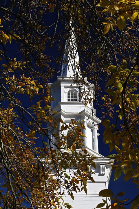 Church Through the Leaves - Cantor Photography