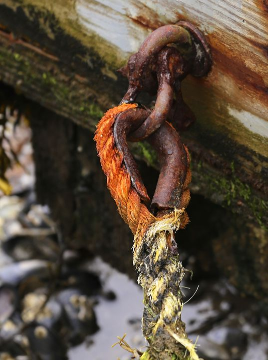 Mooring Rope - Cantor Photography