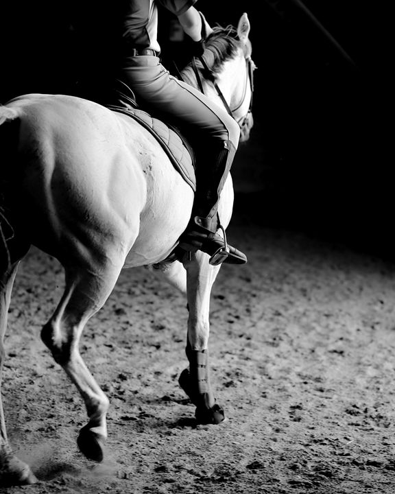 Dressage Lesson I - Cantor Photography