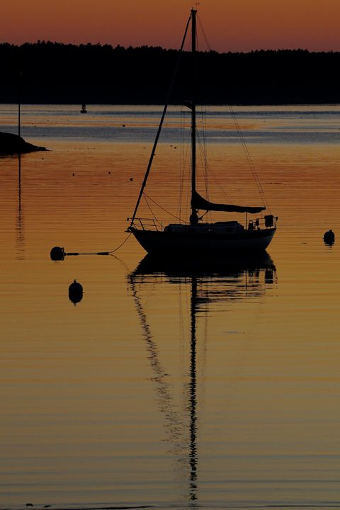Sailboat Silhouette - Cantor Photography