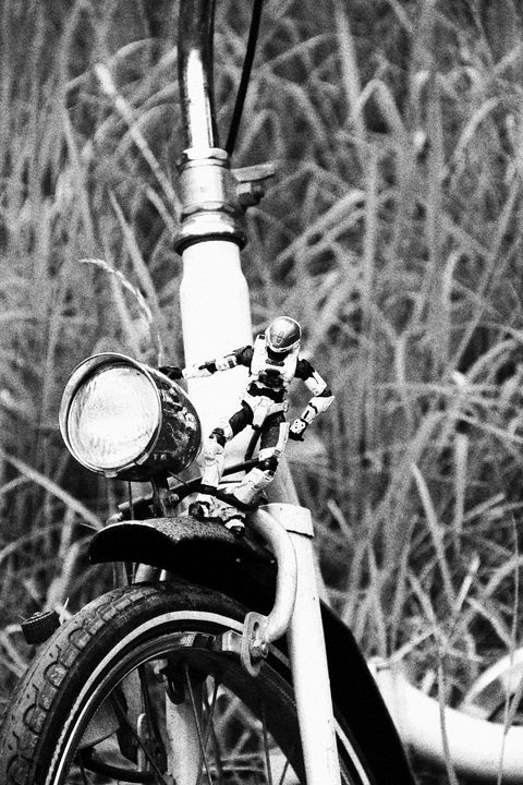 Bicycle - L'Vanneti