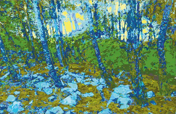 pine forest - anatomkrk