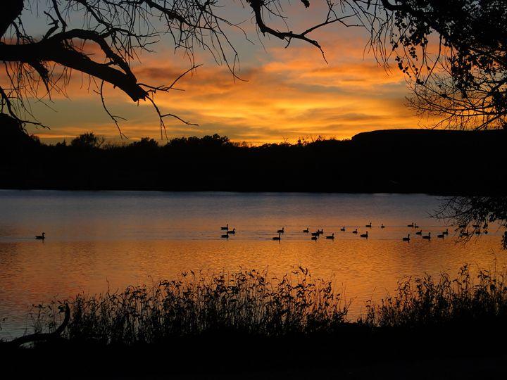 Sunset at Scott Lake - Ducks on Lake - Julia Hutchins