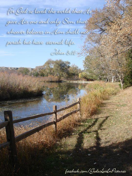 John 3:16 - Julia Hutchins