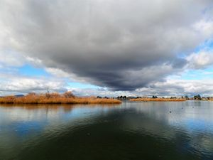 Lake Wendouree in Winter