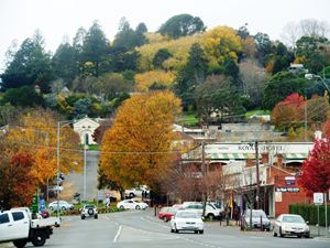 Autumn in Daylesford