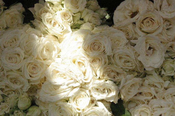 Bouquet of White Roses - mijodo asian gallery