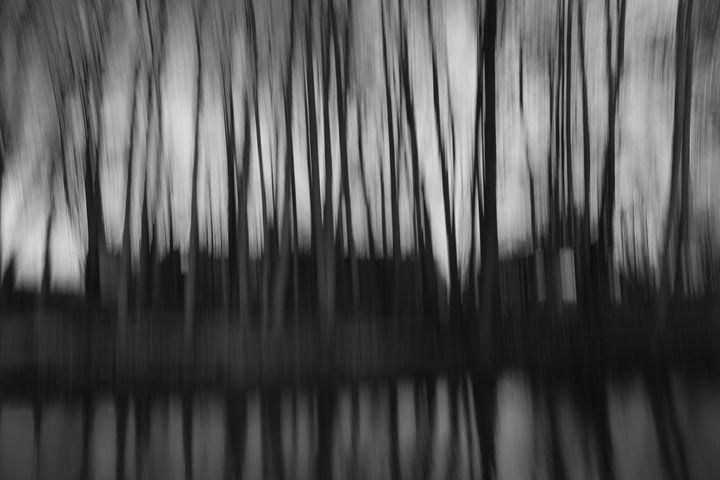 Black House - Jaroslaw Szadkowski