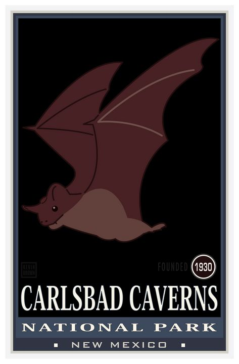 Carlsbad Caverns - Vintage Travel by Kevin Brown Studio