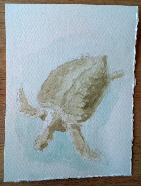Turtle - rudebird