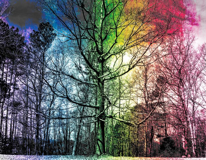 Over The Rainbow - Tiara L. Moran