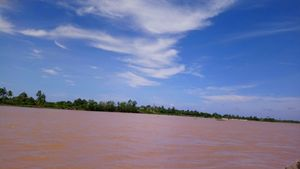Alluvium on Hau river, Viet Nam