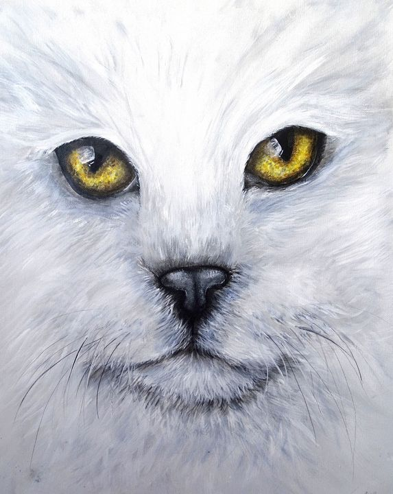 Confronting the white cat - Evelyne Joy of Art