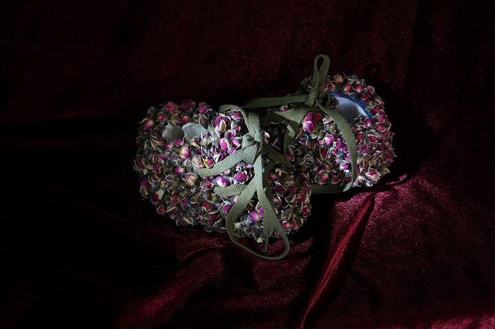 Rose Shoe - Art Exploration