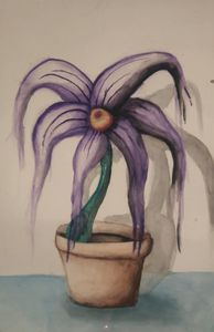 Two shadow space plant