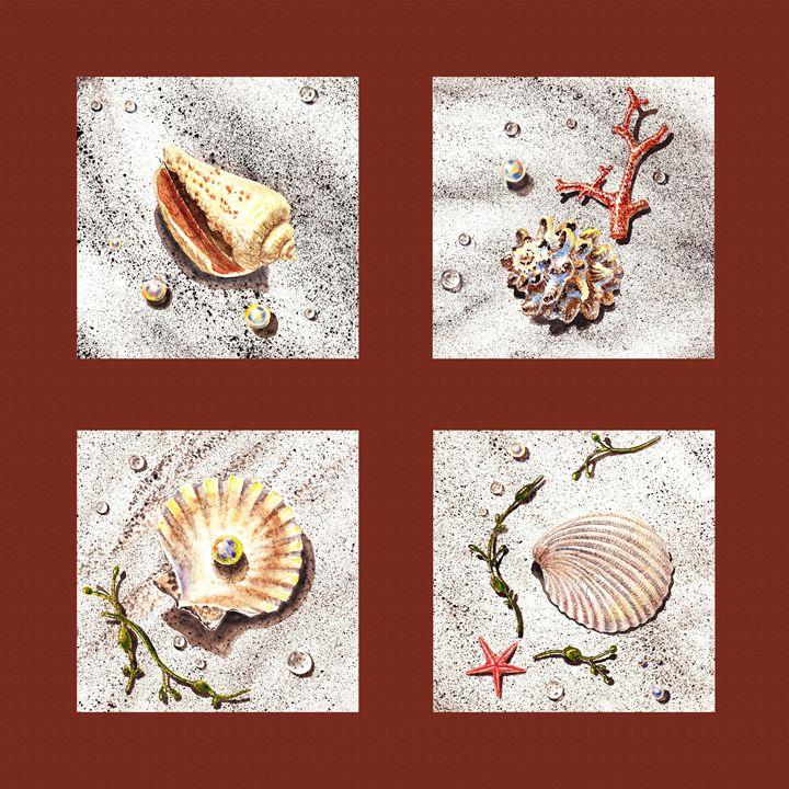Seashell Collection IV - Artszarts