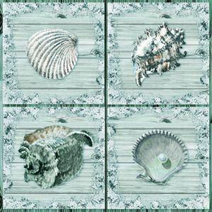 Turquoise Seashells Wood Deck Art