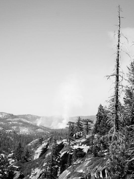 Yosemite - Natasha R. Shacklett