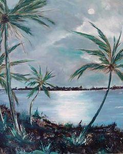 Evening in Florida