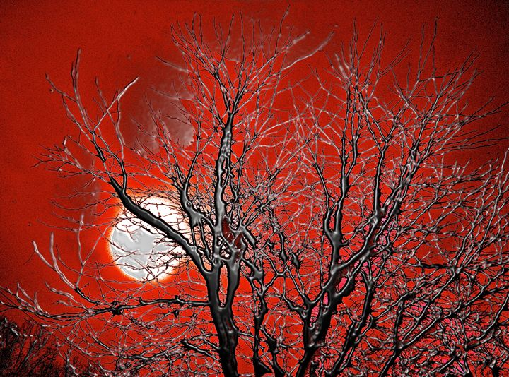 BLOOD FOREST - GILES ARTS