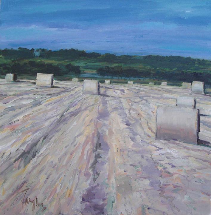 Strathearn harvest - Tom Barron Artist